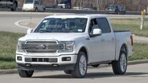 2019 Ford F-150 Limited casus fotoğraflar