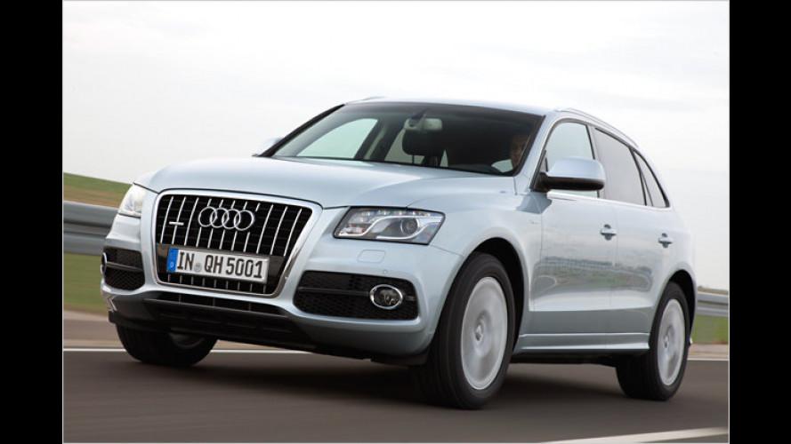 Dynamisches Doppel: Unterwegs im Audi Q5 Hybrid