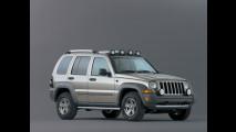 Jeep Cherokee my2004 Renegade