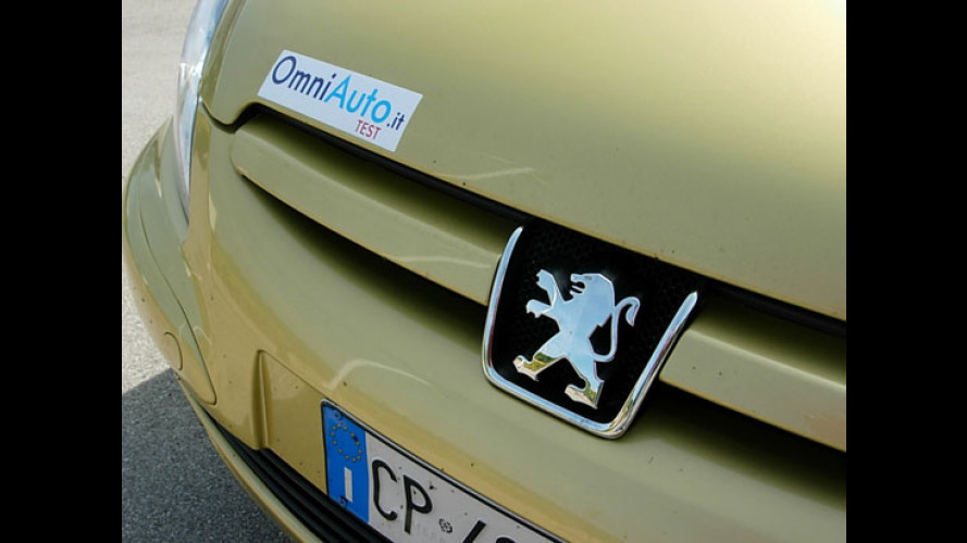Peugeot 307  SW 1.6 HDi FAP