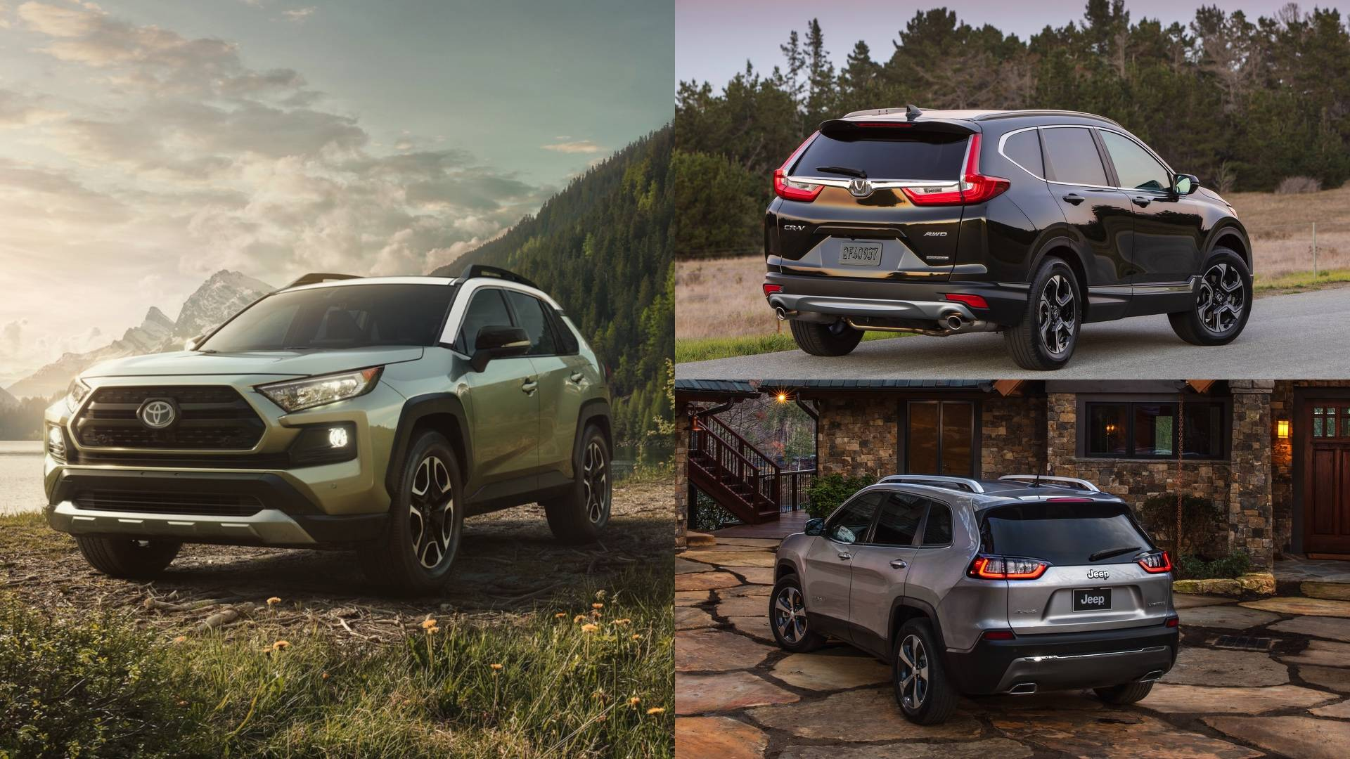 2019 Toyota RAV4 How Does It Stack Up Against The petition