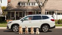 Subaru Dog Commercials