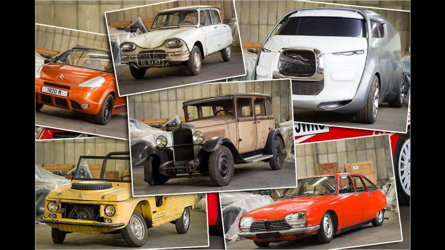 Diese 65 Autos versteigert Citroën