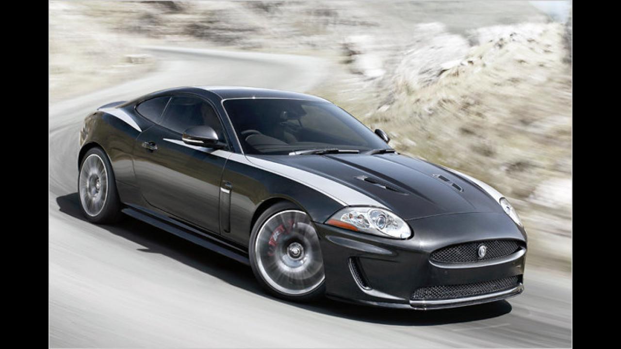 Jubiläums-Jaguar