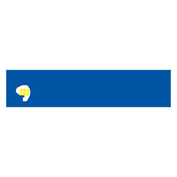 Günsel